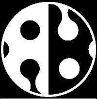 Reef Ball Logo