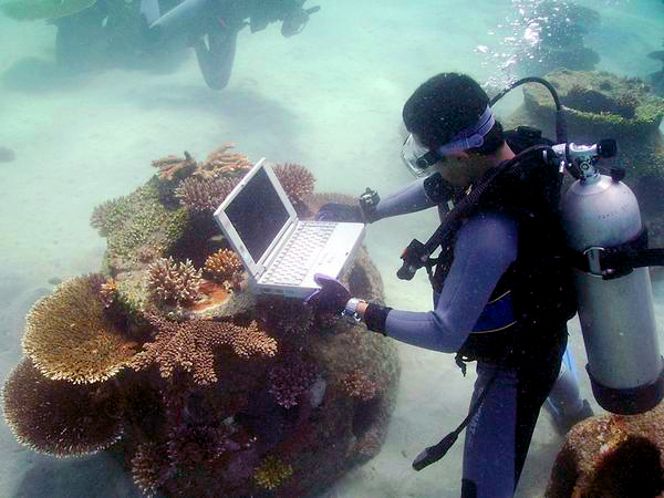 monitoring computer underwater reef ball