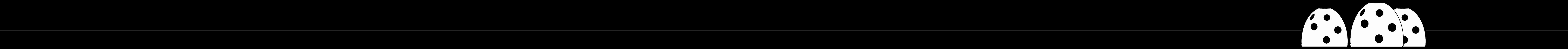 RBF_Divider-B-W2_Long