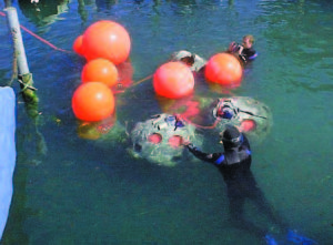 Floating Reef Ball deployment in Lake Zürich