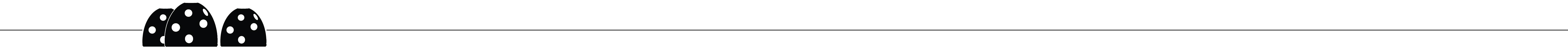 RBF_Divider-B-W3_Long