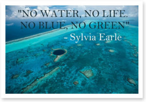 quote-sylviaearle